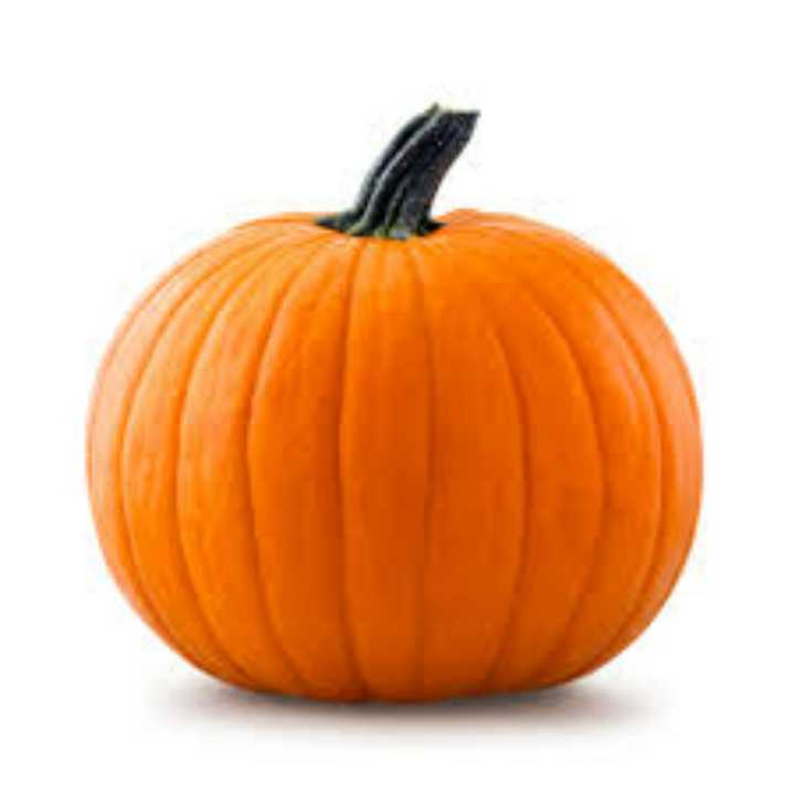 Wanted: Your old jack o lanterns!