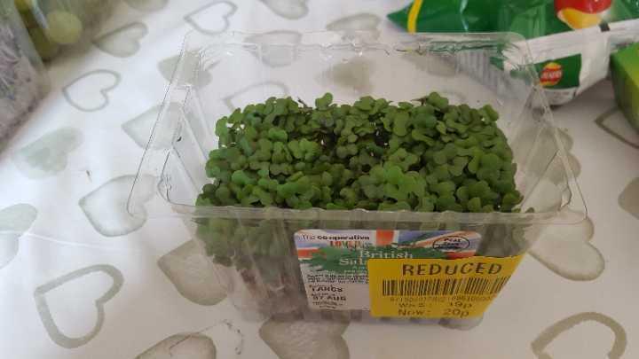 British Salad Cress