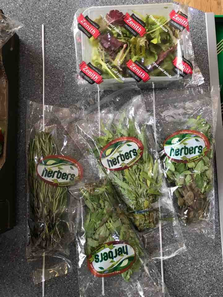 Free herbs and salad