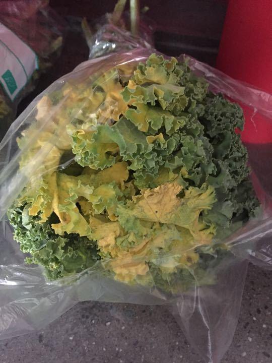 Organic kale!
