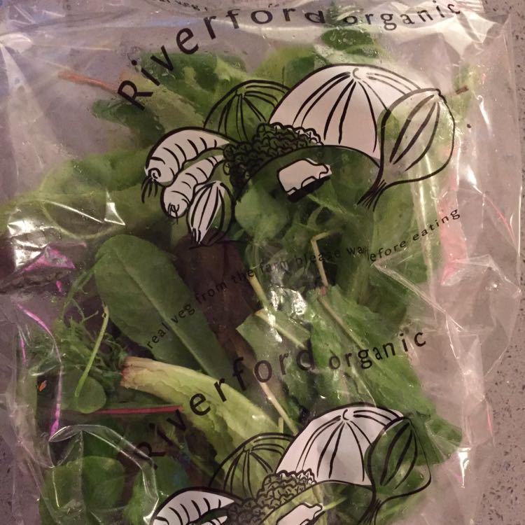 Bag of organic green salad leaves