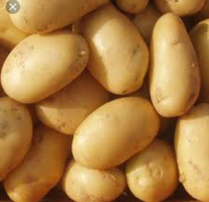 WANTED - potatoes