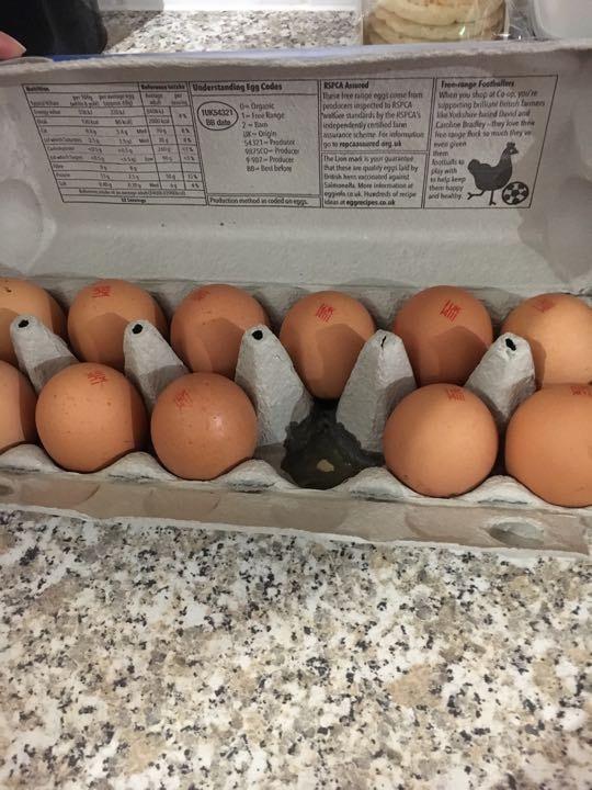 11 large free range eggs