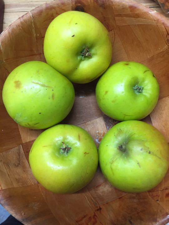 5 Bromley cooking apples available