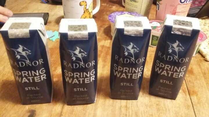 4 x 250ml cartons of still water