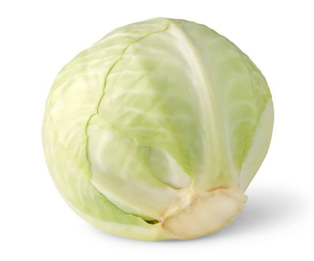 An organic white cabbage