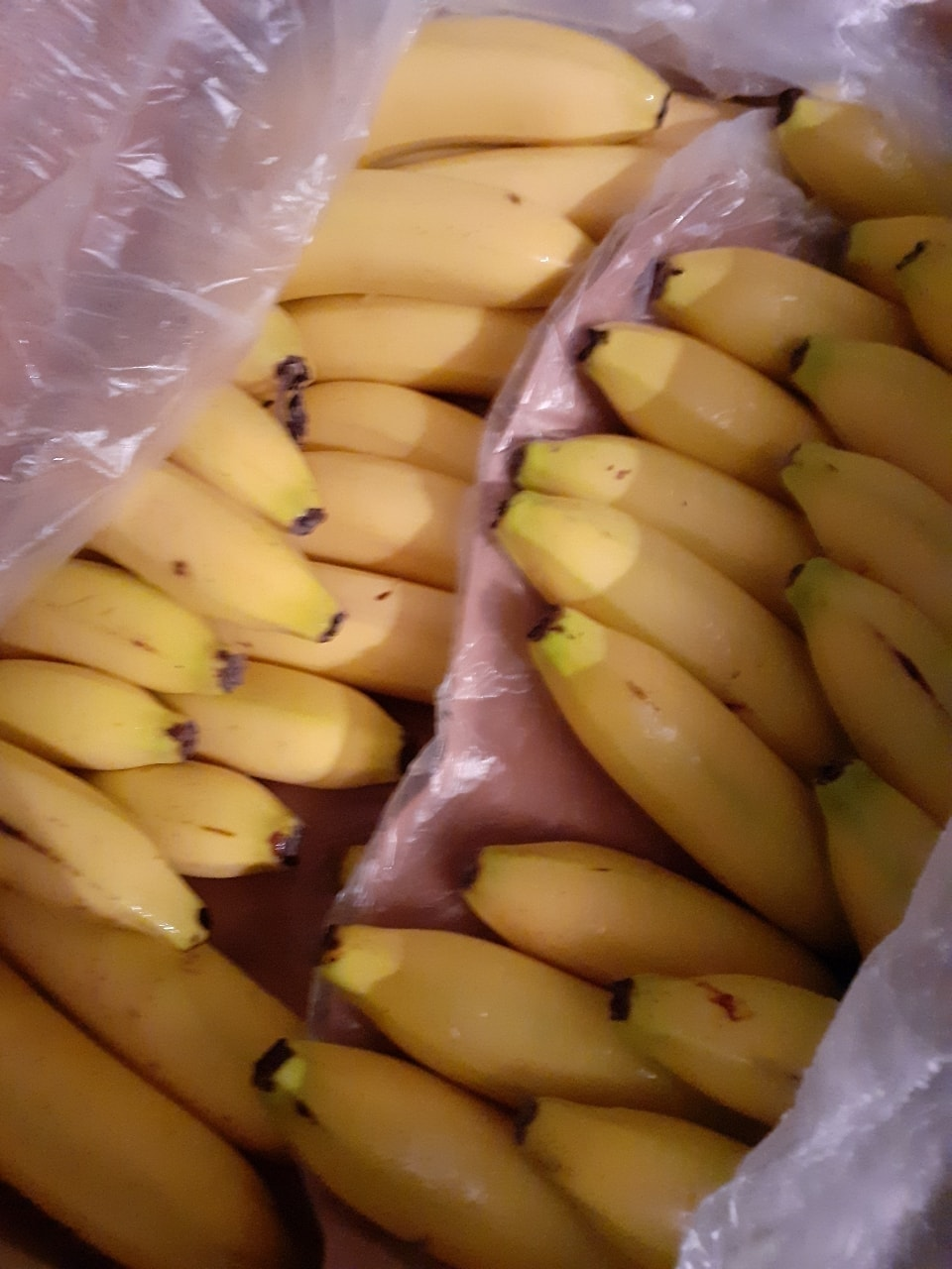 Bananas (7 in a bunch)