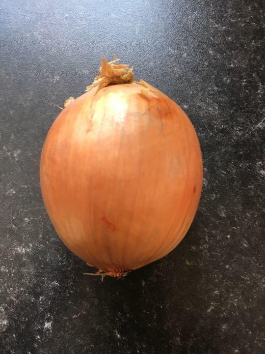 Large onion