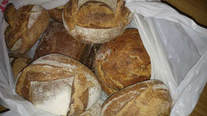 Selection of Artisan Loaves