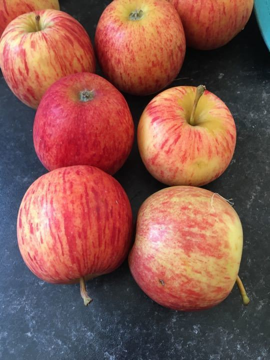 X2 sets of 4 red apples