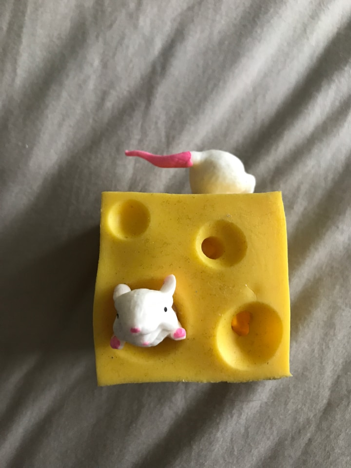 Squidgy cheese/mice toy