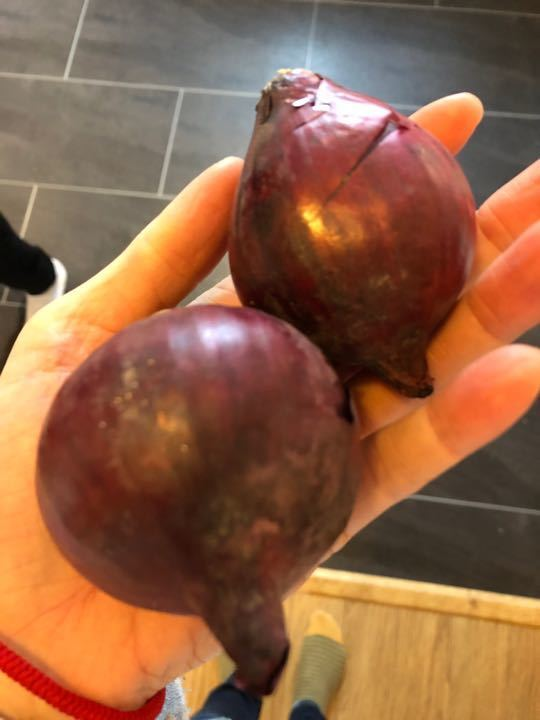 Red onions X2