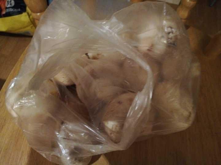 Dozen and a half loose mushrooms