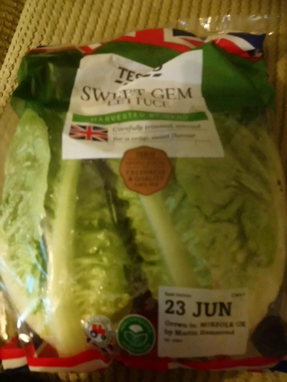 Sweet gem lettuce x2