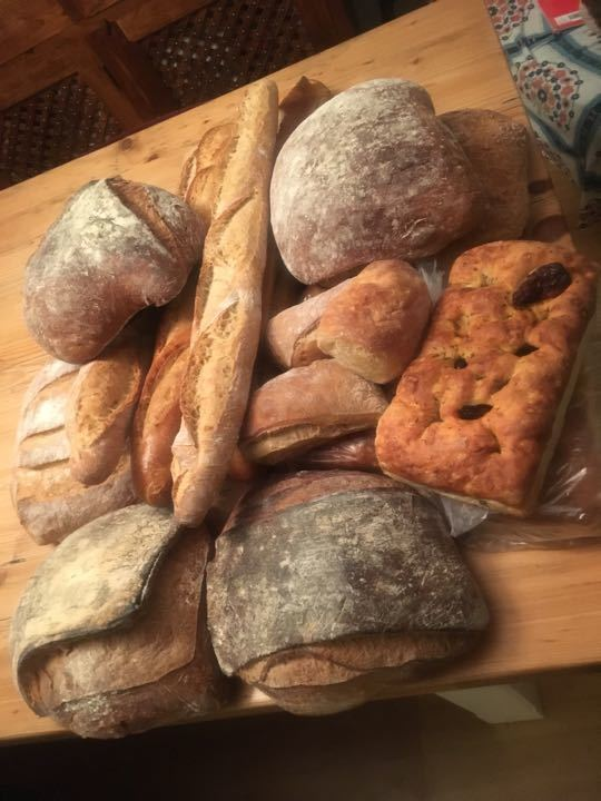 Fresh loaves of bread sourdough/white/seeded), baguettes and focaccia slices.