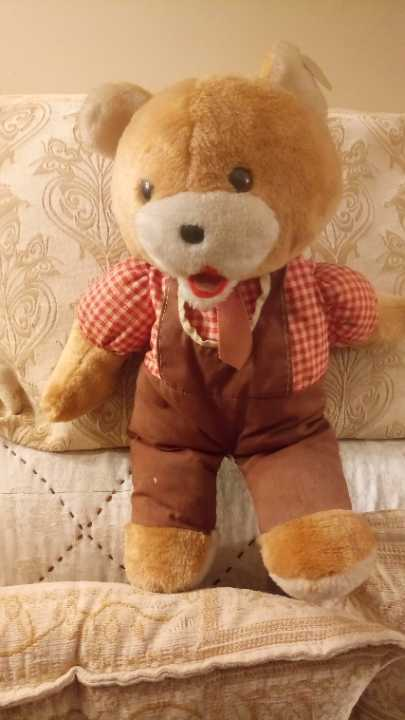 Nice Teddy..