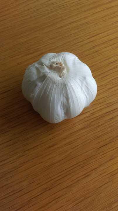 Whole bulb of garlic