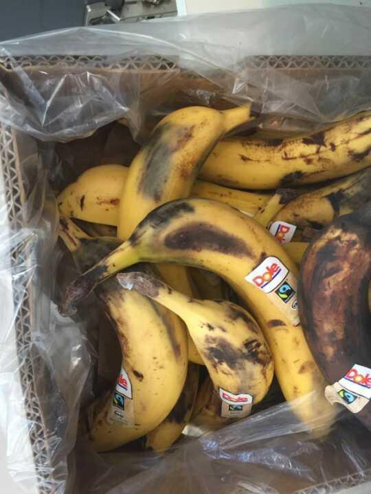 Lot's of bananas