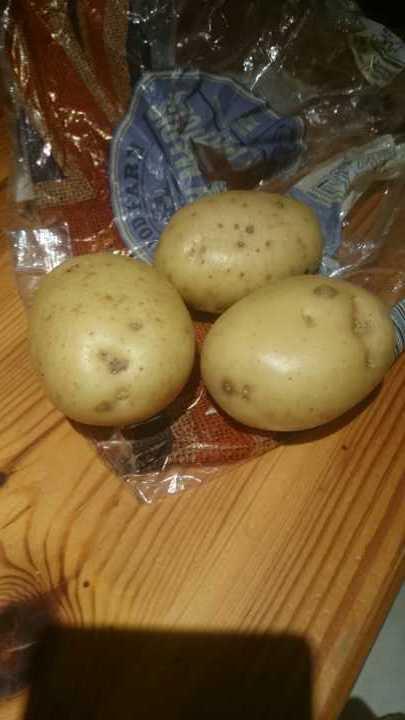 3 Marris Piper Potatoes