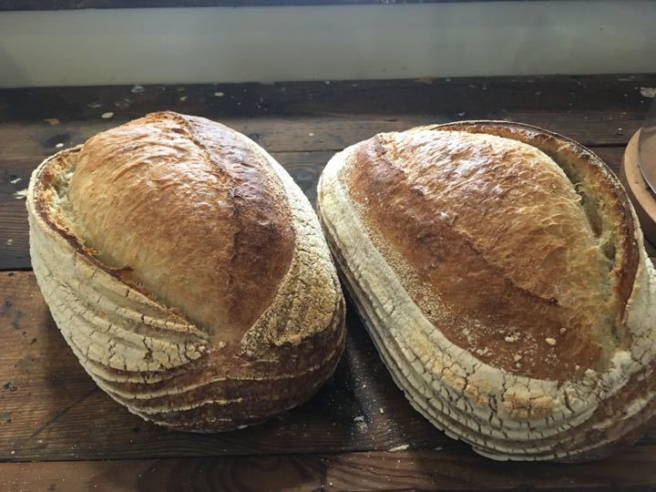 Two massive sourdough breads