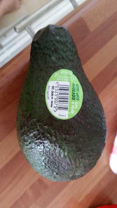 Extra large avocade