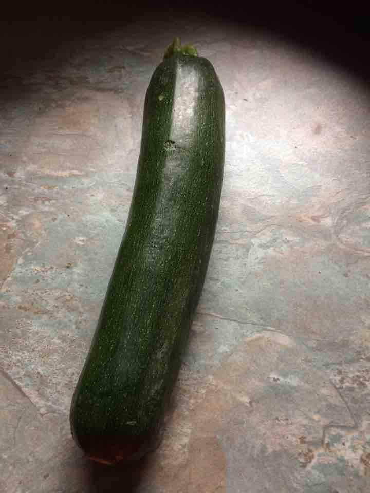 Large courgette going spare