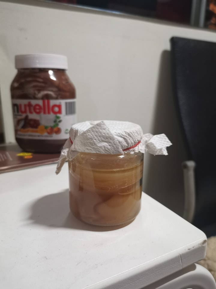 Baby scoby