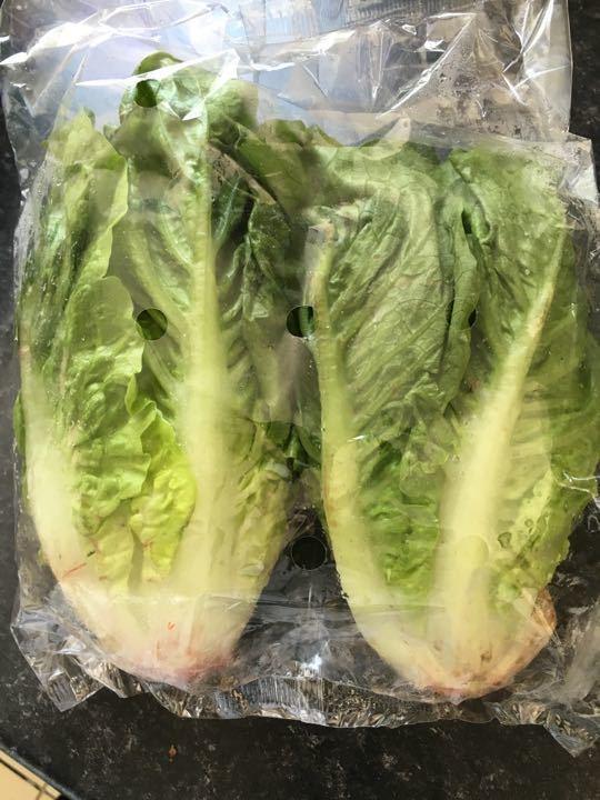 Gem lettuce