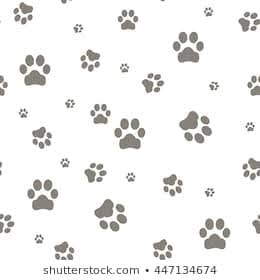 Cosas para perros