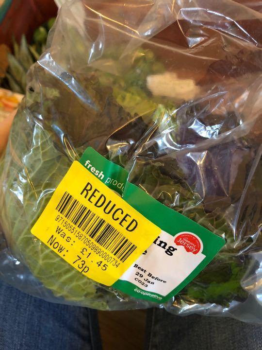 Jan king cabbage