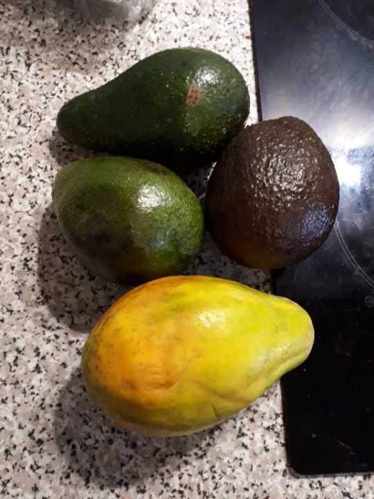 Assorted mango and avocado