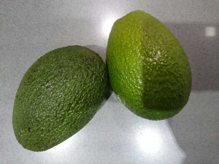 Amazing avocados for free!