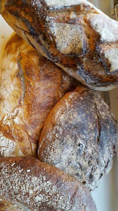 Bread, levain or sourdough