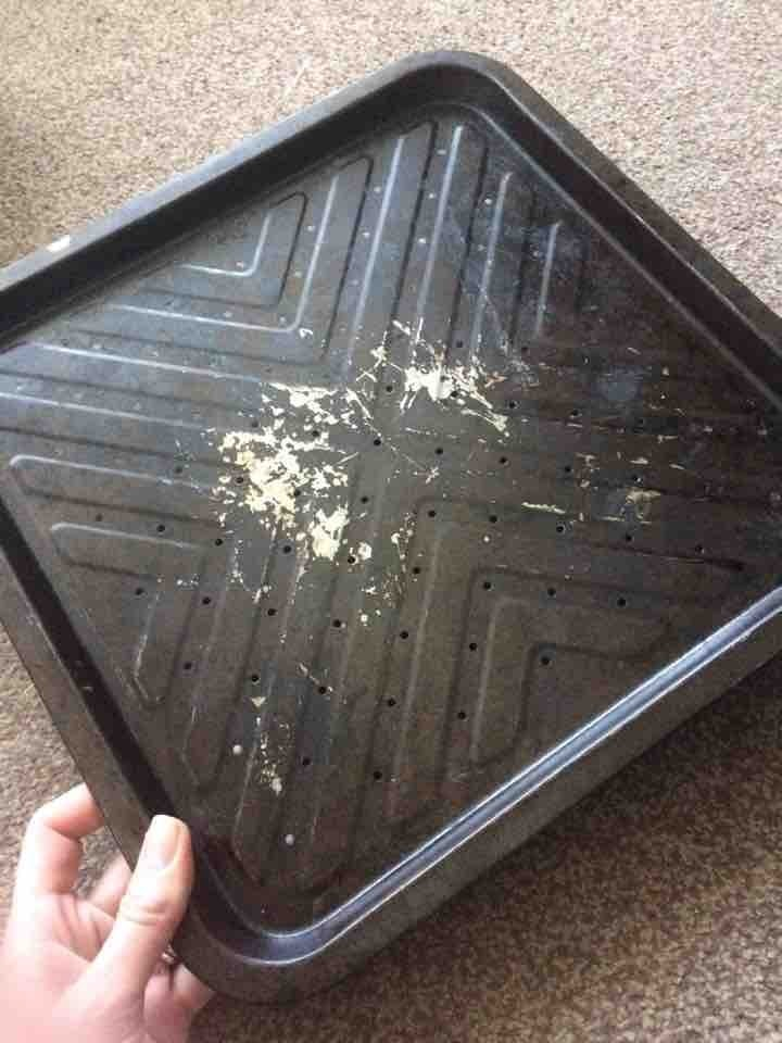 Pizza tray