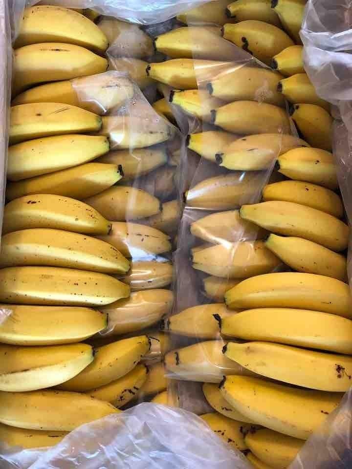 Bananas !! 🍌🍌🍌🍌🍌