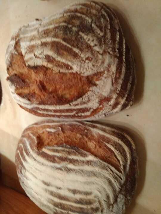 Artisan Sanetra sourdough bread