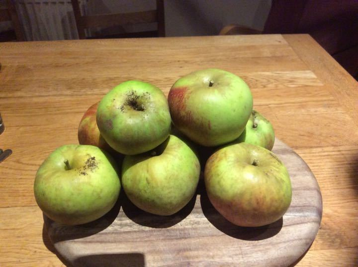 A versatile apple , can be cooked or eaten