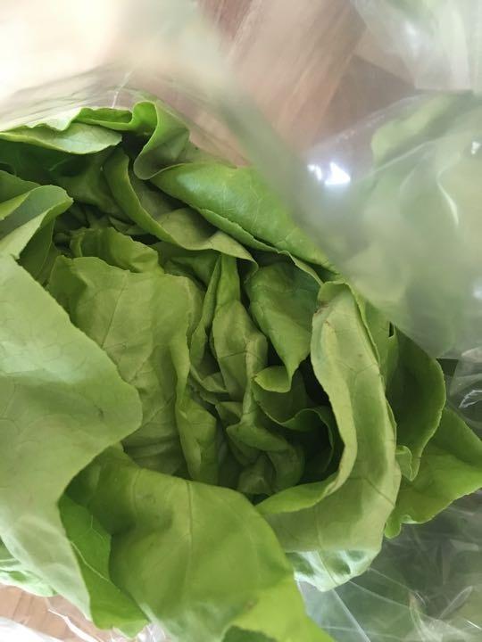 Lettuce round