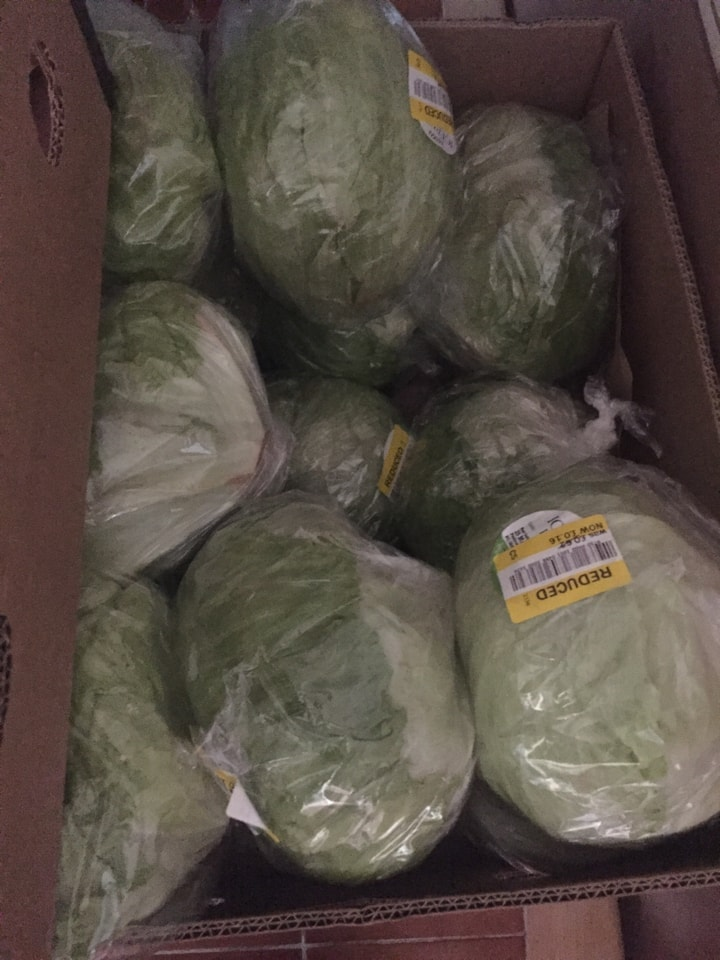 Lots of lettuce must take all