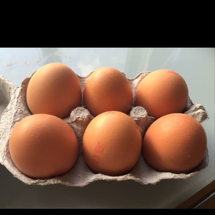 6 free range eggs - picked Sat