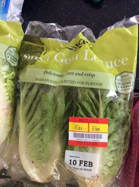 Sweet gem lettuce