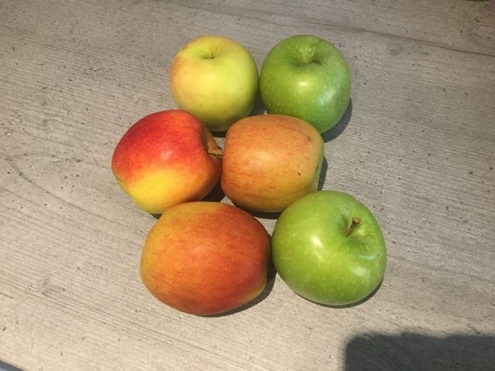 Pack of 6 apples 🍎