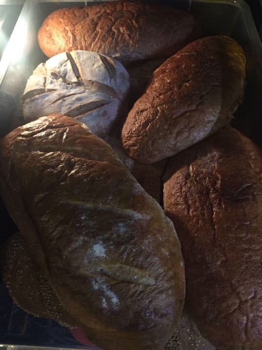 Assorted Loaves