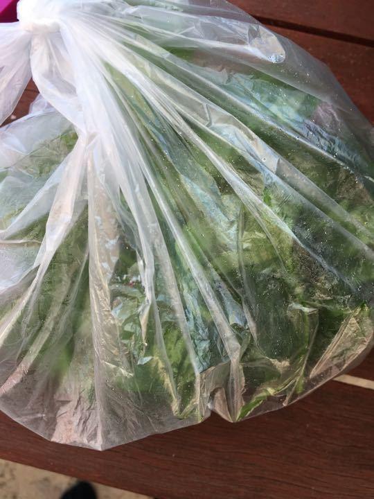 X3 bags of flat leaf parsley