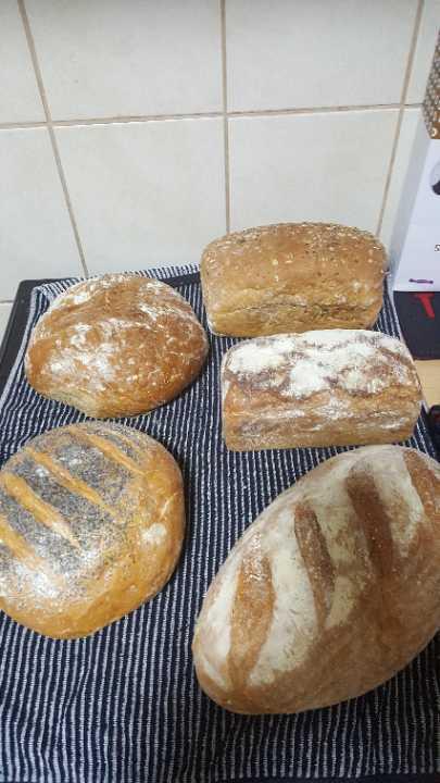 Mixed Polish bread