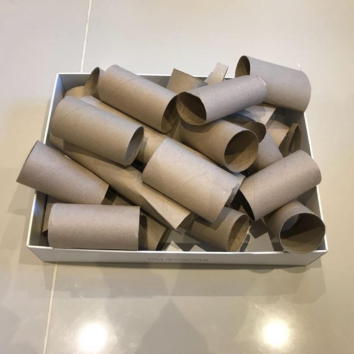 Empty Toilet Roll Tubes