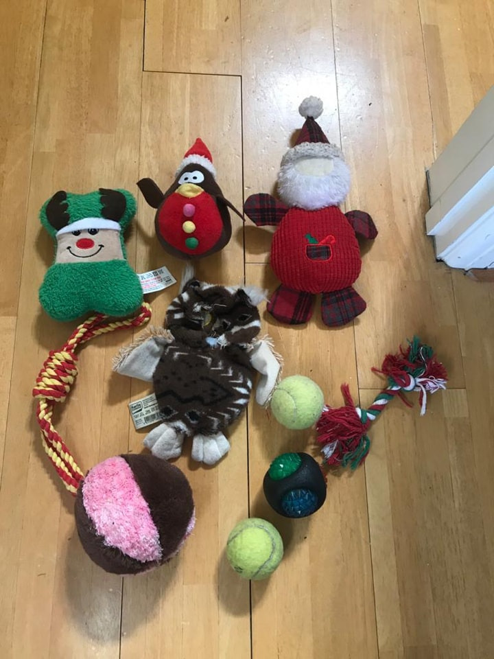 Selection of dog toys