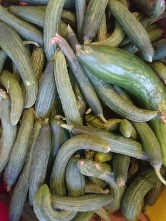 2kg of imperfect cucumbers