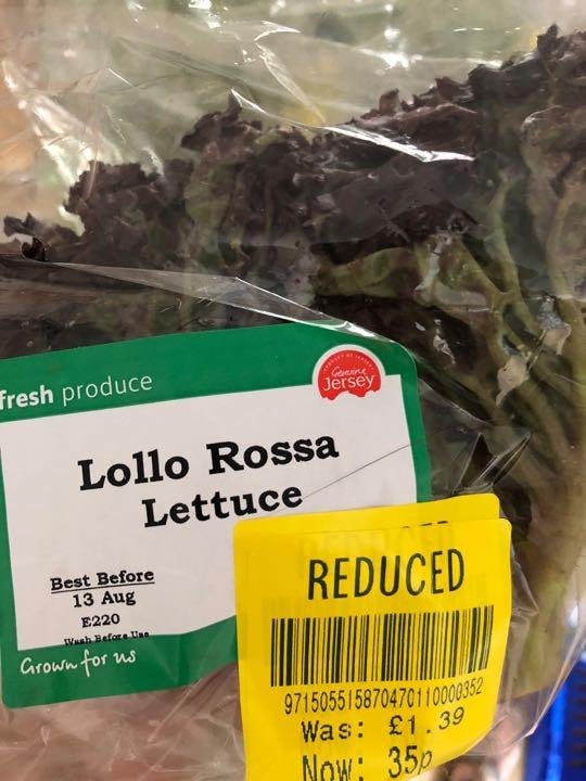 lollo Rossa lettuce