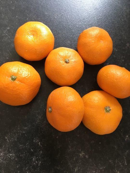 Bag of 7 oranges
